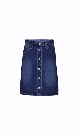 Veronica denim skirt